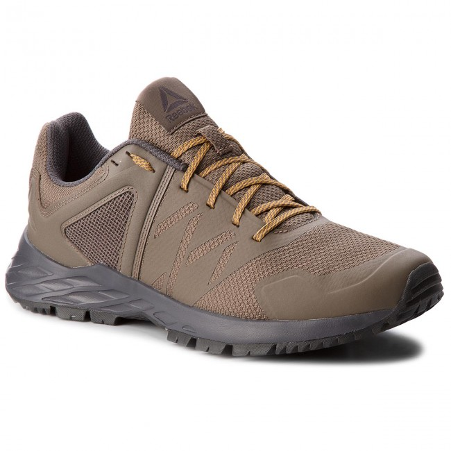 Schuhe Reebok-Astroride Trail CN4579 Grey/Coal/Gold